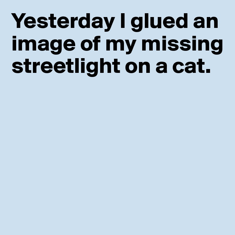 Yesterday I glued an image of my missing streetlight on a cat.