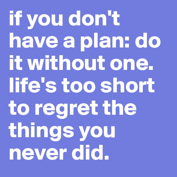 if you don't have a plan: do it without one. life's too short to regret the things you never did.