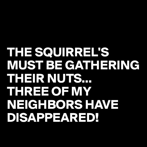 THE SQUIRREL'S MUST BE GATHERING THEIR NUTS... THREE OF MY NEIGHBORS HAVE DISAPPEARED!