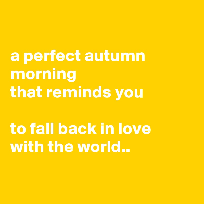 a perfect autumn morning that reminds you   to fall back in love with the world..