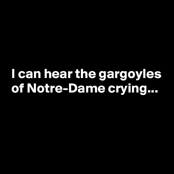 I can hear the gargoyles  of Notre-Dame crying...