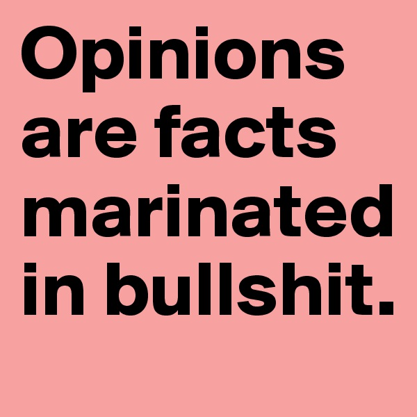 Opinions are facts marinated in bullshit.