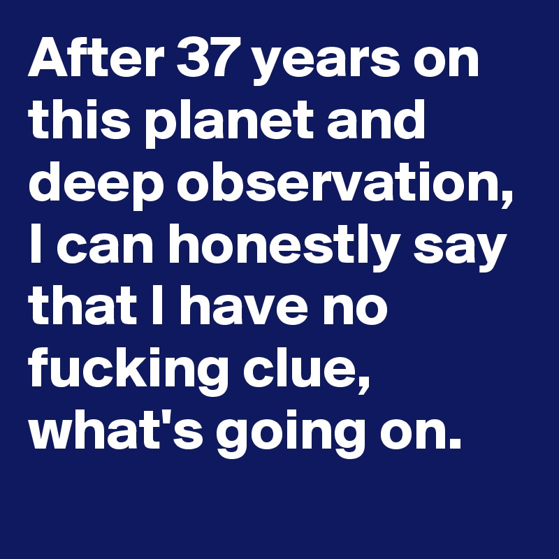 After 37 years on this planet and deep observation, I can honestly say that I have no fucking clue, what's going on.