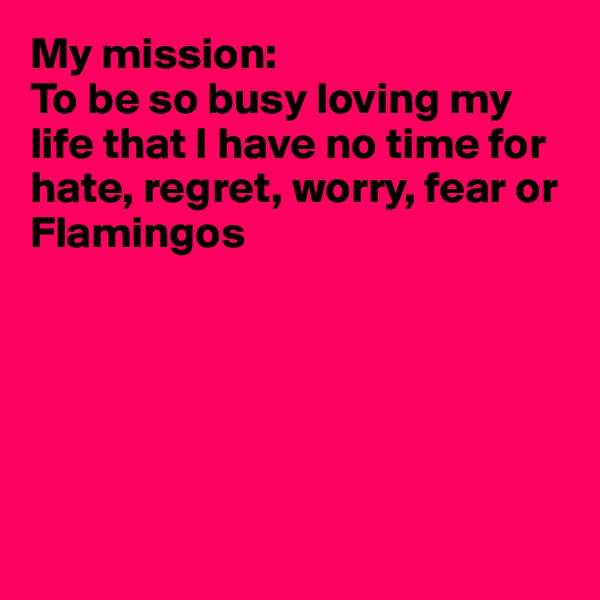 My mission:  To be so busy loving my life that I have no time for hate, regret, worry, fear or Flamingos