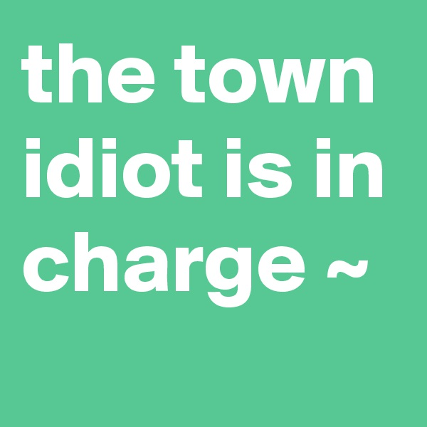 the town idiot is in charge ~