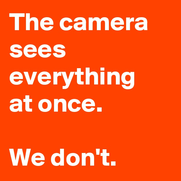 The camera sees everything  at once.  We don't.