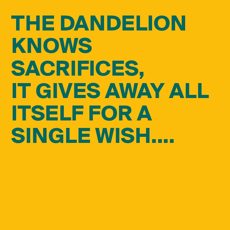 THE DANDELION KNOWS SACRIFICES,  IT GIVES AWAY ALL ITSELF FOR A SINGLE WISH....