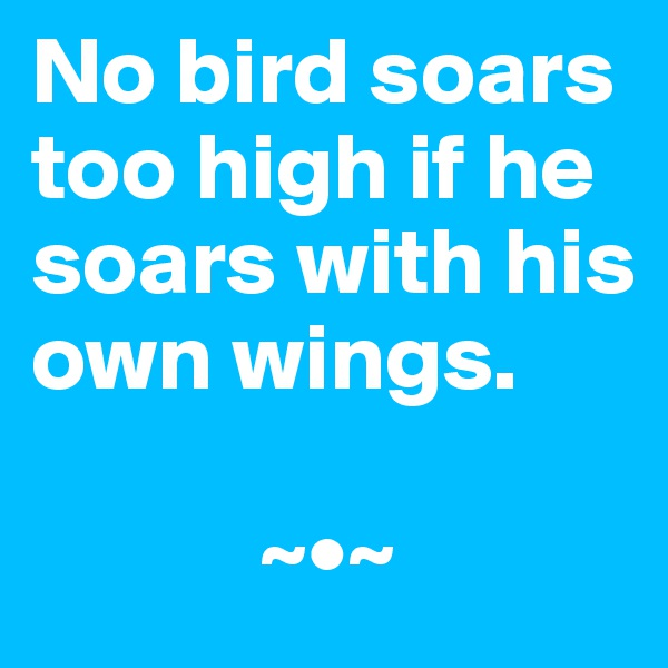 No bird soars too high if he soars with his own wings.              ~•~
