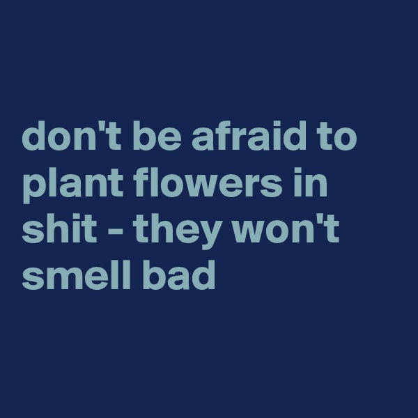 don't be afraid to plant flowers in shit - they won't smell bad