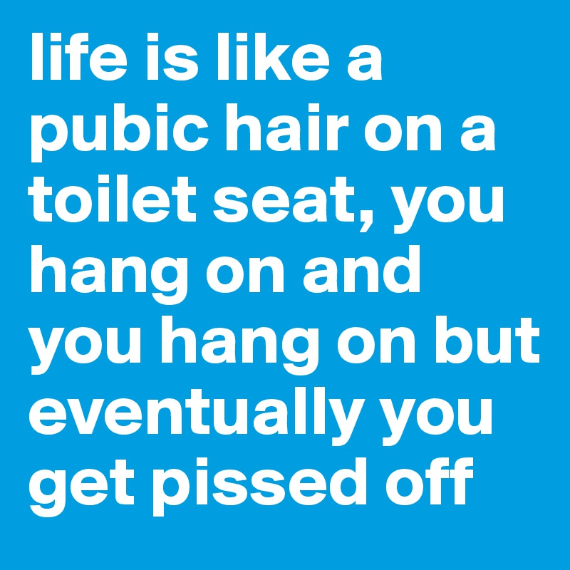 life is like a pubic hair on a toilet seat, you hang on and you hang on but eventually you get pissed off