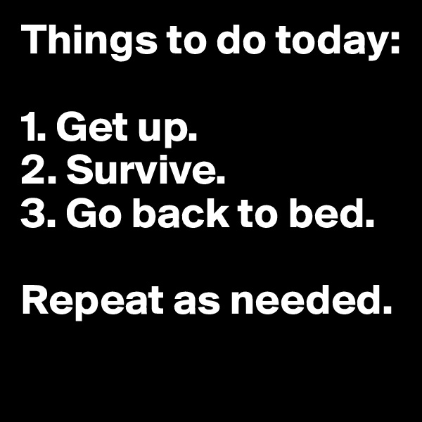 Things to do today:  1. Get up. 2. Survive. 3. Go back to bed.  Repeat as needed.