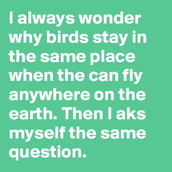 I always wonder why birds stay in the same place when the can fly anywhere on the earth. Then I aks myself the same question.