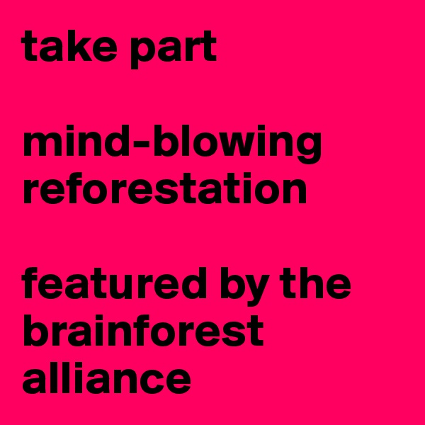 take part  mind-blowing reforestation  featured by the brainforest alliance