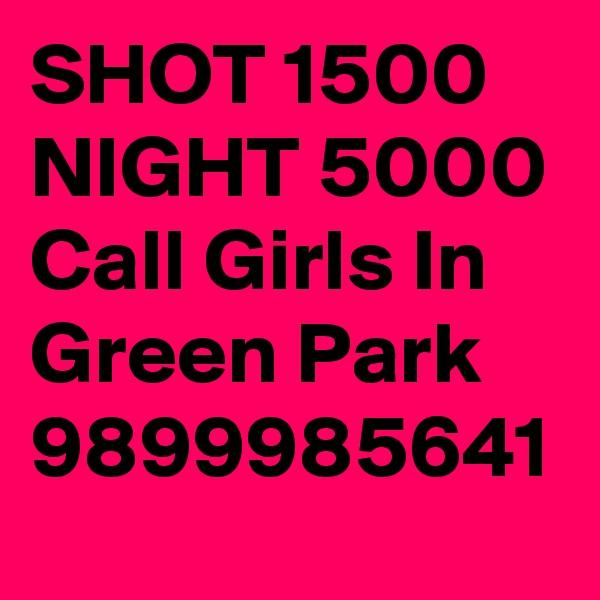 SHOT 1500 NIGHT 5000 Call Girls In Green Park 9899985641