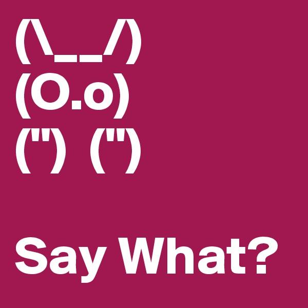 """(\__/) (O.o) ("""")  ("""")  Say What?"""