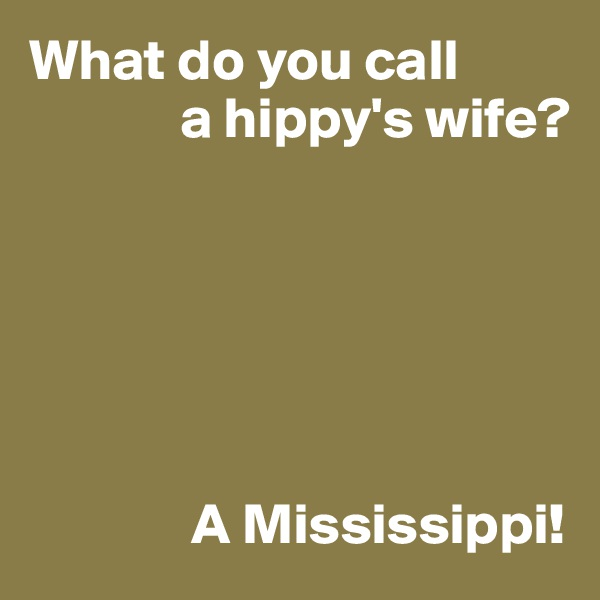 What do you call              a hippy's wife?                     A Mississippi!