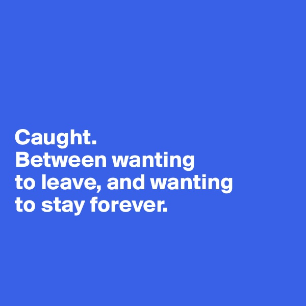 Caught.  Between wanting  to leave, and wanting  to stay forever.