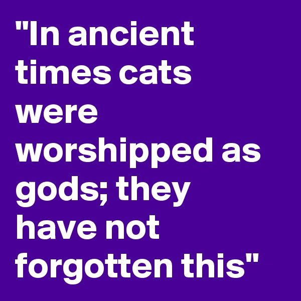"""In ancient times cats were worshipped as gods; they have not forgotten this"""