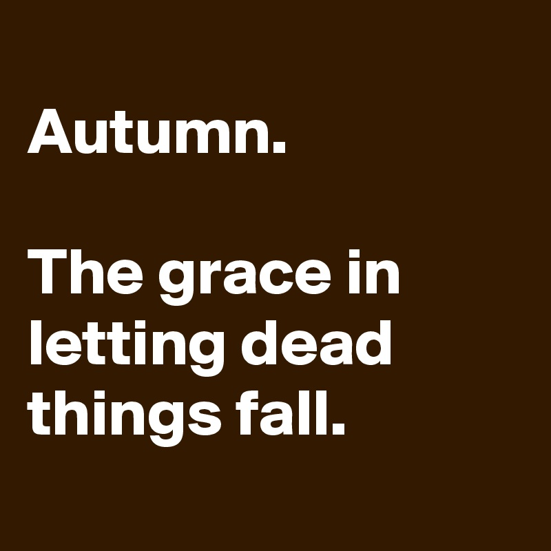 Autumn.  The grace in letting dead things fall.