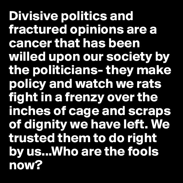 Divisive politics and fractured opinions are a cancer that has been willed upon our society by the politicians- they make policy and watch we rats fight in a frenzy over the inches of cage and scraps of dignity we have left. We trusted them to do right by us...Who are the fools now?
