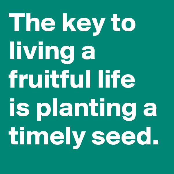 The key to living a fruitful life is planting a timely seed.