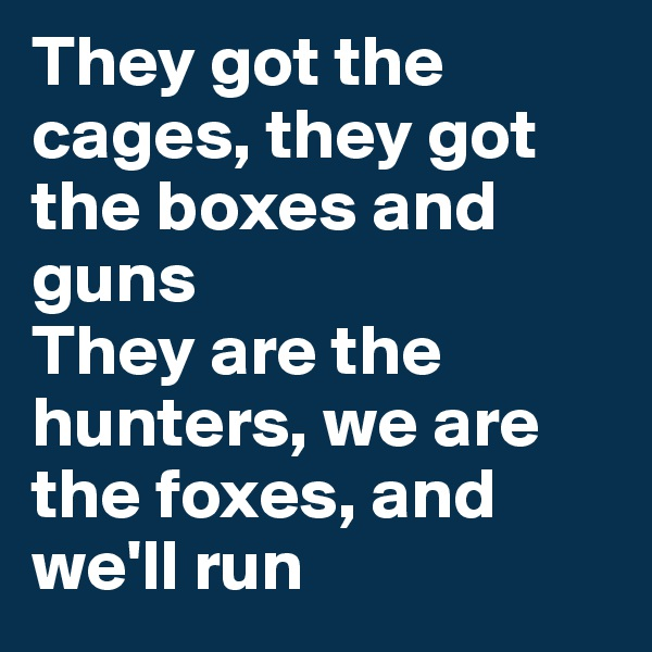 They got the cages, they got the boxes and guns They are the hunters, we are the foxes, and we'll run