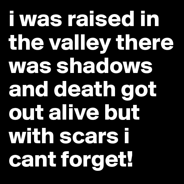 i was raised in the valley there was shadows and death got out alive but with scars i cant forget!