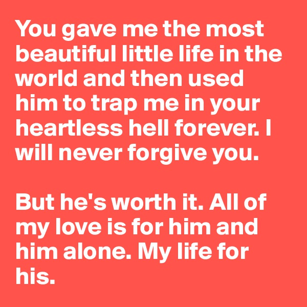 You gave me the most beautiful little life in the world and then used him to trap me in your heartless hell forever. I will never forgive you.  But he's worth it. All of my love is for him and him alone. My life for his.