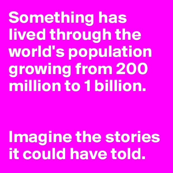 Something has lived through the world's population growing from 200 million to 1 billion.   Imagine the stories it could have told.