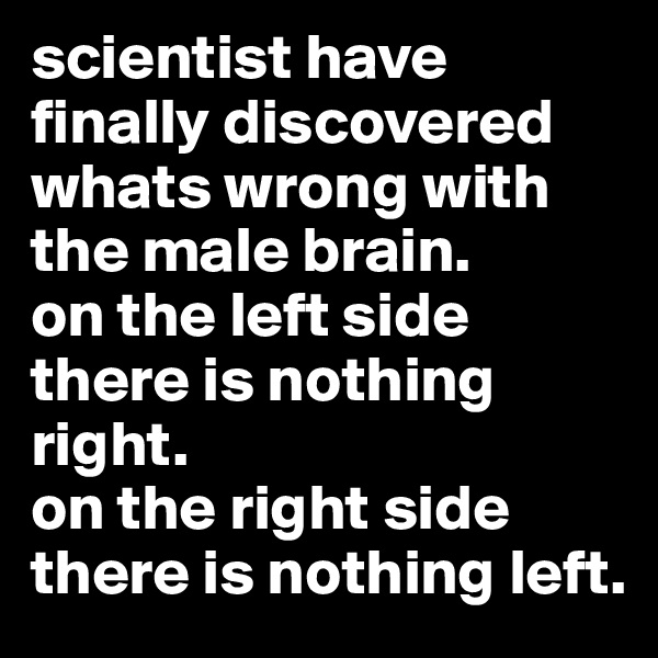 scientist have finally discovered whats wrong with the male brain.  on the left side there is nothing right. on the right side there is nothing left.