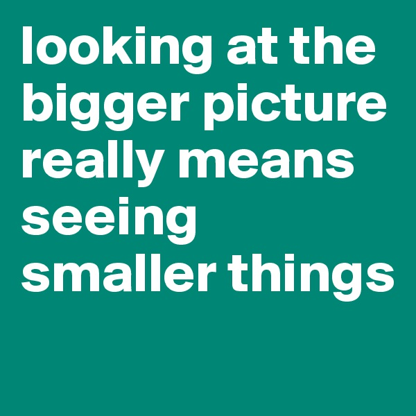 looking at the bigger picture really means seeing smaller things