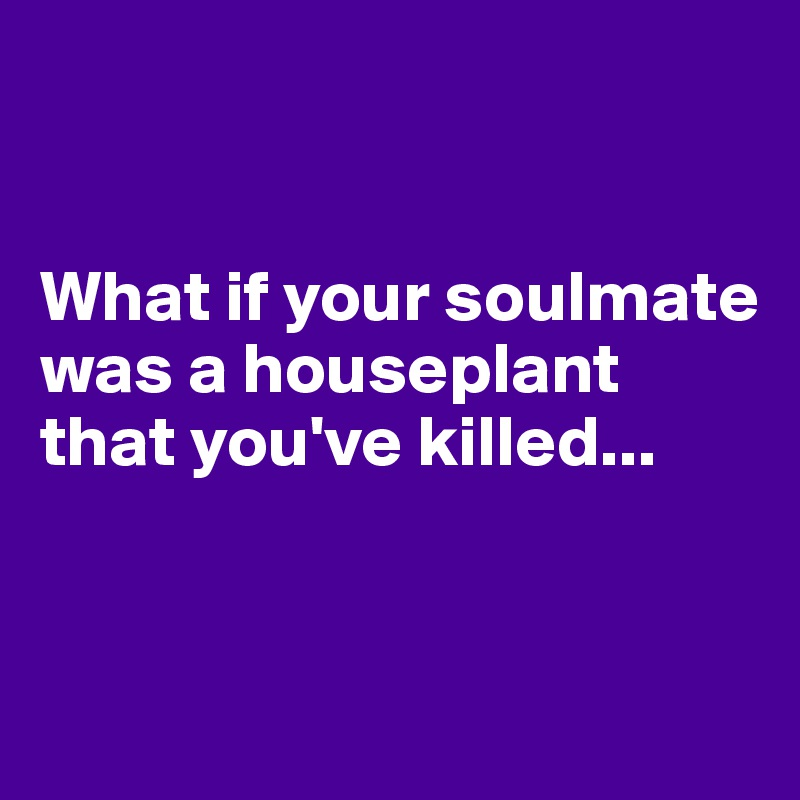 What if your soulmate was a houseplant that you've killed...