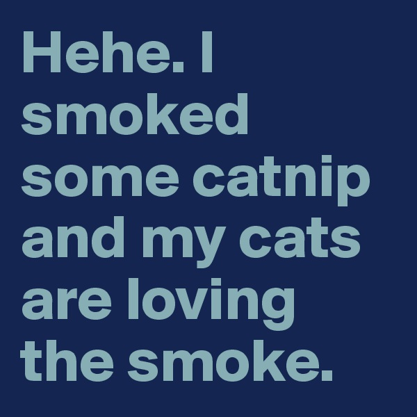Hehe. I smoked some catnip and my cats are loving the smoke.