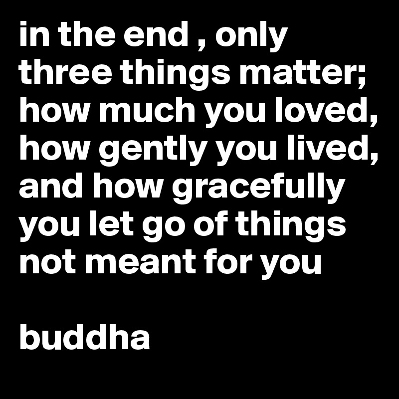 in the end , only three things matter; how much you loved, how gently you lived, and how gracefully you let go of things not meant for you  buddha