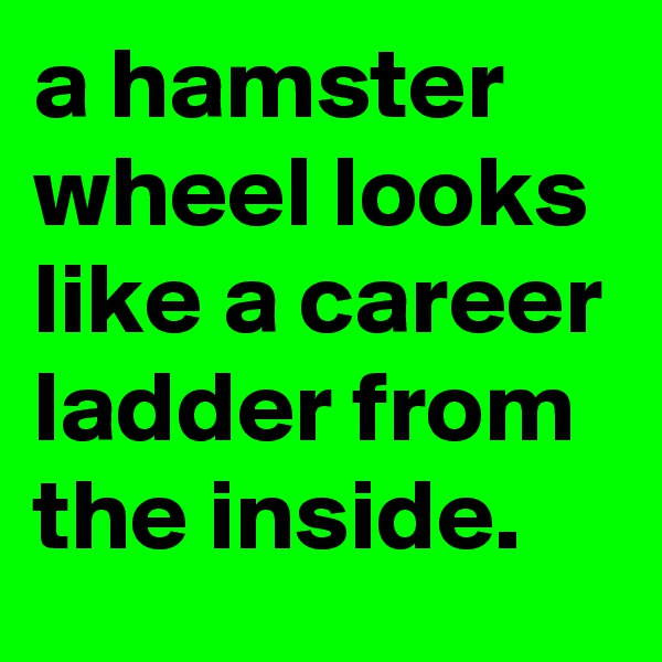 a hamster wheel looks like a career ladder from the inside.