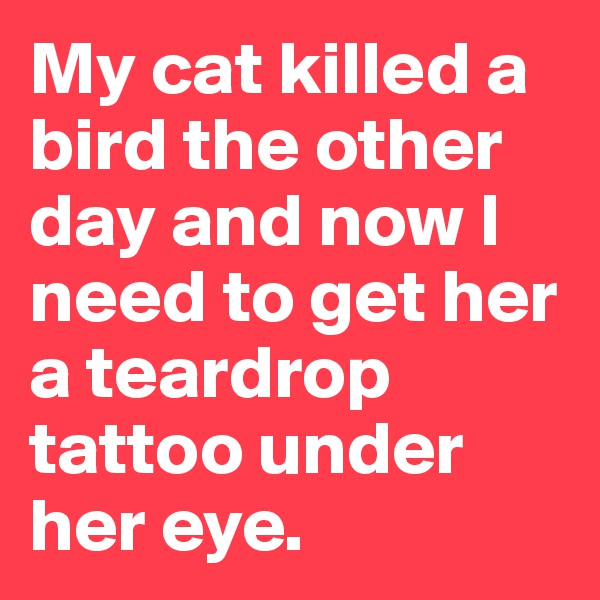 My cat killed a bird the other day and now I need to get her a teardrop tattoo under her eye.