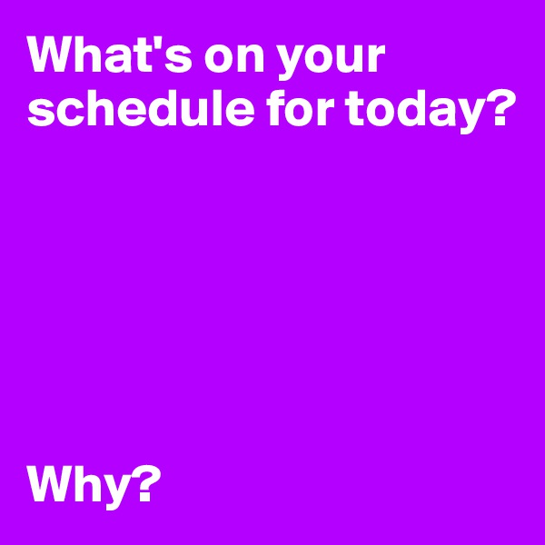 What's on your schedule for today?       Why?