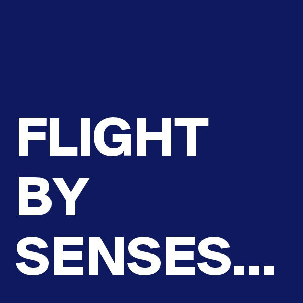FLIGHT BY SENSES...