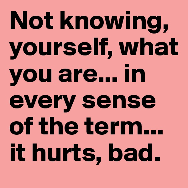 Not knowing, yourself, what you are... in every sense of the term... it hurts, bad.