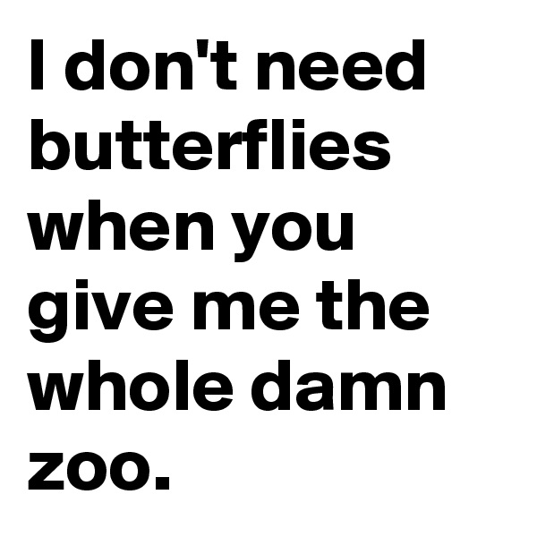 I don't need butterflies when you give me the whole damn zoo.