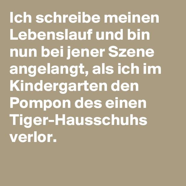 Ich schreibe meinen Lebenslauf und bin nun bei jener Szene angelangt, als ich im Kindergarten den Pompon des einen Tiger-Hausschuhs verlor.