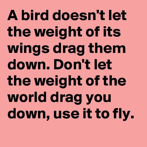 A bird doesn't let the weight of its wings drag them down. Don't let the weight of the world drag you down, use it to fly.