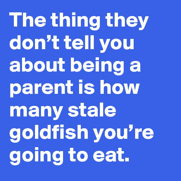 The thing they don't tell you about being a parent is how many stale goldfish you're going to eat.