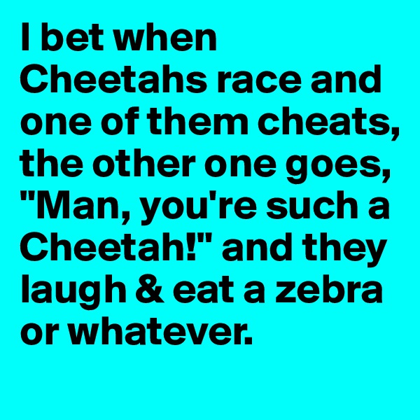"""I bet when Cheetahs race and one of them cheats, the other one goes, """"Man, you're such a Cheetah!"""" and they laugh & eat a zebra or whatever."""