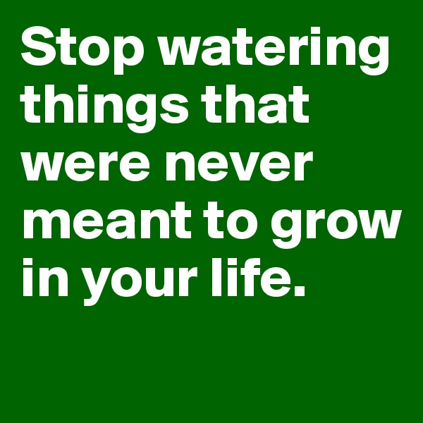 Stop watering things that were never meant to grow in your life.