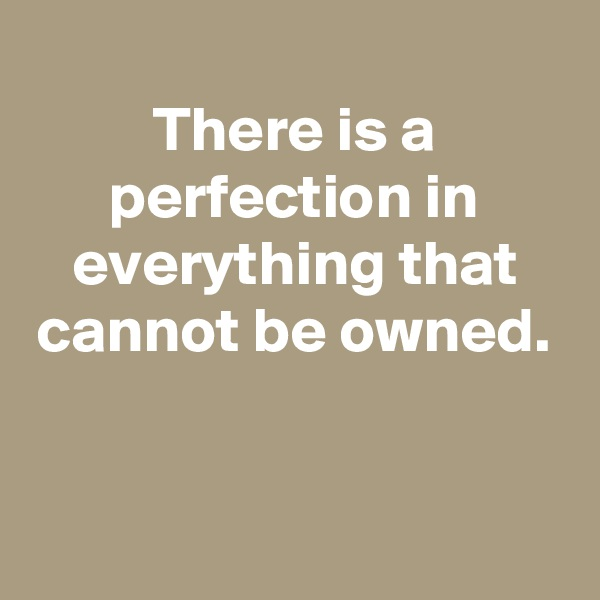 There is a perfection in everything that cannot be owned.