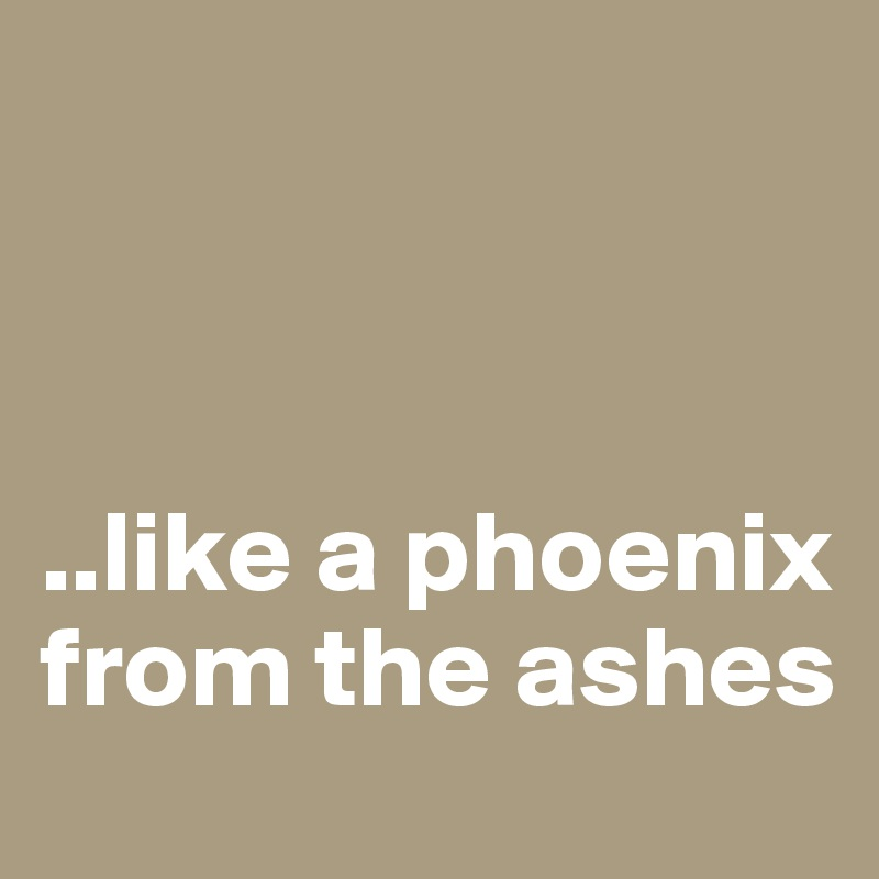 ..like a phoenix from the ashes