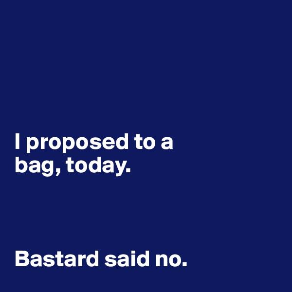 I proposed to a  bag, today.     Bastard said no.