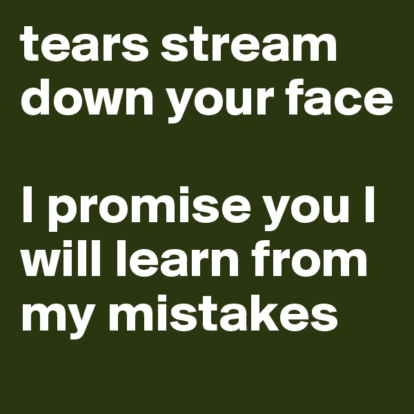 tears stream down your face  I promise you I will learn from my mistakes