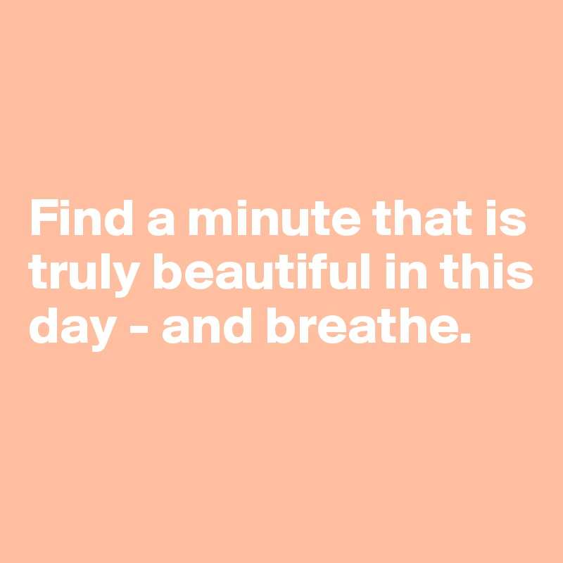 Find a minute that is truly beautiful in this day - and breathe.